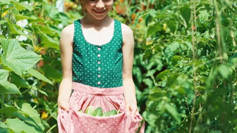 Girl-Holds-Vegetables-Cucumbers-In-Her-Apron-Of-Dress