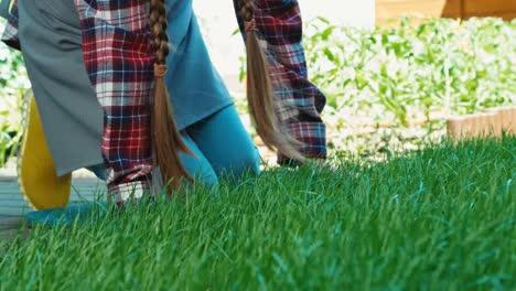 Mädchen-Berührt-Wenig-Gras