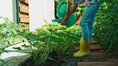 Mädchen-Gießt-Gurke-In-Ihrem-Gemüsegarten
