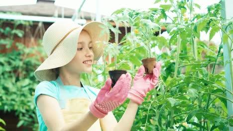 Mädchen-Das-Sämlinge-Von-Gemüse-In-Ihren-Händen-Betrachtet