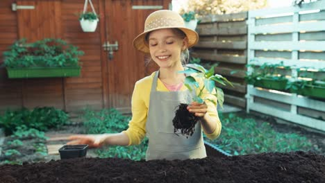 Girl-Offering-Audience-A-Seedling-Of-Pepper-Little-Farmer-Smiling-At-Camera
