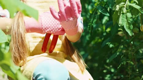 Girl-Putting-On-Rubber-Gloves-And-Using-Secateurs-In-The-Garden