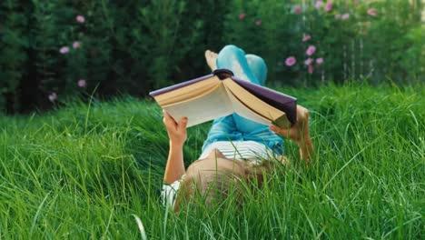 Libro-De-Lectura-De-Niña-En-El-Tiro-De-Carro-De-Hierba-Verde