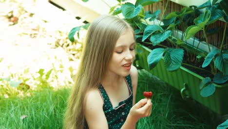 Girl-Sitting-On-Grass-And-Eating-Strawberry