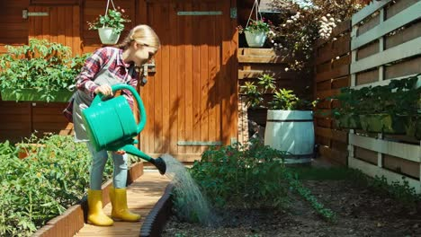 Girl-Watering-Tomatoes-In-The-Kitchen-Garden-And-Smiling-At-Camera