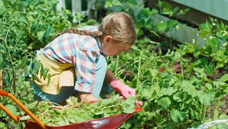 Girl-Working-In-The-Kitchen-Garden-At-Sunny-Day-And-Smiling-At-Camera