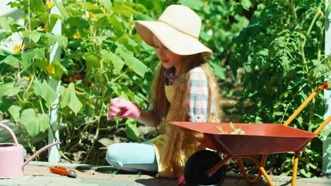 Girl-Working-In-The-Kitchen-Garden