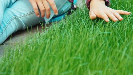 Hand-Des-Kindes-Das-Gras-Berührt