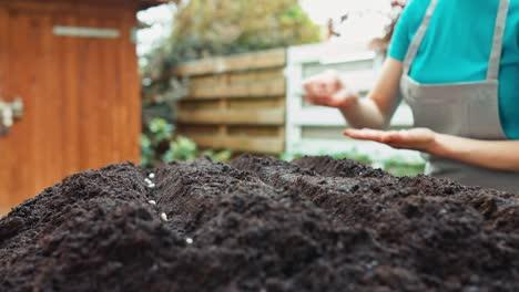 Hand-Einer-Frau-Die-Bohnensamen-Auf-Den-Boden-Im-Gartenwagen-Pflanzt