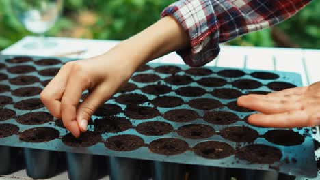Hands-Of-Child-Planting-Seeds-To-Soil-Close-Up-Shot