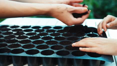 Hands-Working-With-Soil-In-Plastic-Plant-Pots-Close-Up-Shot