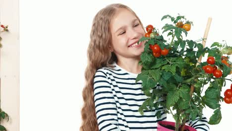 Laughing-Child-Holds-Tomatoes-In-Pot