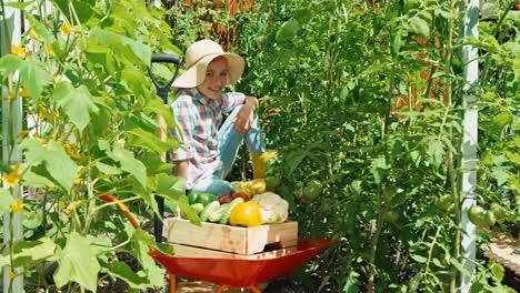 Lachender-Kleiner-Bauer-Mit-Einer-Gemüseernte