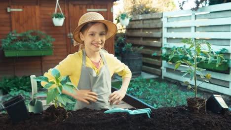 Kleines-Bauernmädchen-Das-Plant-Sämling-Von-Tomaten-In-Den-Boden-Zu-Pflanzen