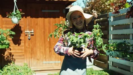Kleines-Bauernmädchen-Hält-Setzlinge-Von-Tomaten-Und-Paprika-In-Den-Händen