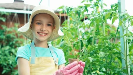 Kleiner-Bauer-Hält-Gurkensetzling-Im-Gemüsegarten-Und-Lächelt