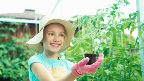 Little-Farmer-Holds-Seedling-Of-Tomato-In-The-Kitchen-Garden-And-Smiling