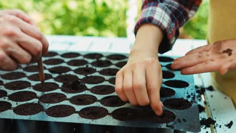 Mother-And-Daughter-Planting-Seeds-Of-Vegetables-To-Plastic-Pots-With-Soil