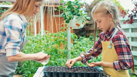 Mother-And-Daughter-Planting-Seeds-To-Pots-Outdoors-In-Their-Kitchen-Garden