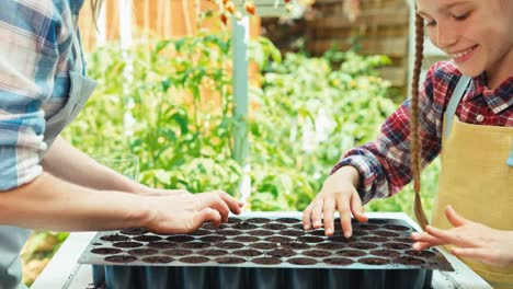 Mother-And-Daughter-Planting-Seeds-To-Soil-And-Smiling-At-Camera