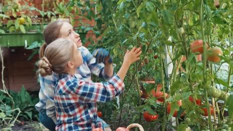 Madre-Con-Su-Hija-Hablando-De-Verduras-En-Huerta