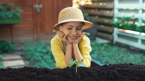 Retrato-Pequeño-Agricultor-Que-Plantó-Vegetales-Al-Suelo-Y-Sonriendo-A-La-Cámara