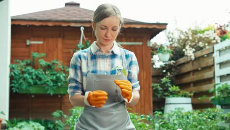 Woman-Holds-In-Her-Hands-Seedling-Of-Vegetables