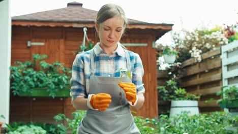 Mujer-Sostiene-En-Sus-Manos-Plántulas-De-Verduras