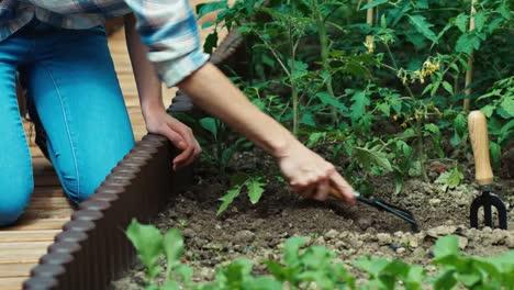 Woman-Loosening-Soil-In-Kitchen-Garden