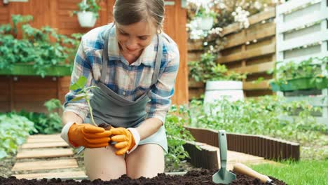 Woman-Planning-Planting-Seedlings-In-Soil