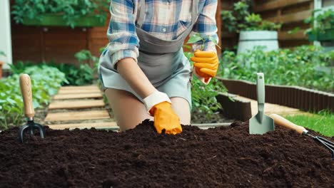 Woman-Planting-Seedlings-In-Soil-She-Smiling-At-Camera