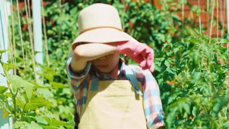 Young-Farmer-Child-8-Age-Goes-With-Wheelbarrow-In-The-Kitchen-Garden-And-Smiling