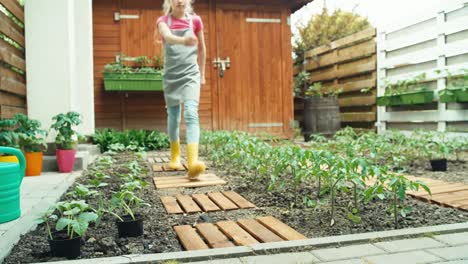 Young-Farmer-Girl-Child-Scrutinize-Young-Seedlings-Cucumber-Dolly-Shot