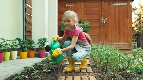 Young-Farmer-Girl-Child-Water-The-Young-Seedlings-Cucumber-Dolly-Shot