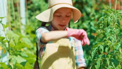 Young-Farmer-Girl-Goes-With-Wheelbarrow-In-Her-Vegetables-Garden