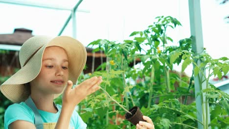 Young-Farmer-Holds-Seedling-Of-Vegetables