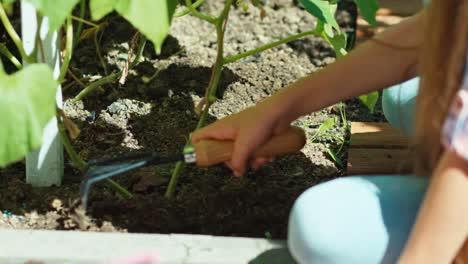 Young-Farmer-Loses-Soil-In-Garden