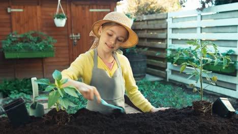 Junglandwirt-Bereitet-Boden-Für-Das-Umpflanzen-Von-Sämlingen-Vor