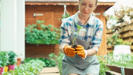 Mujer-Joven-Tiene-Vegetales-De-Plántulas