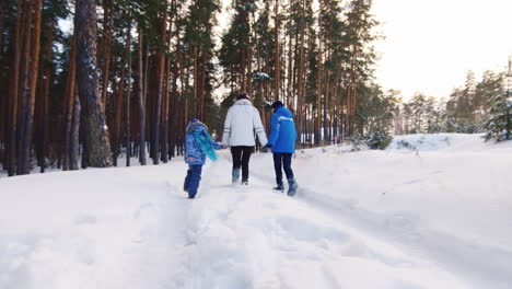 Mother-Walking-Playfully-With-Children-In-The-Snow-01