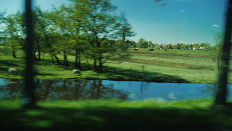 Netherlands-Green-Meadows-And-Canals