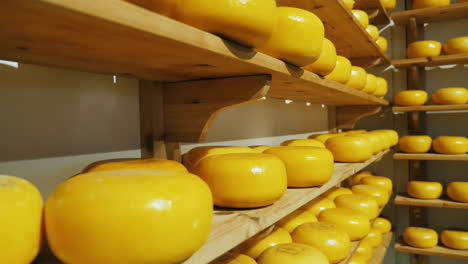 Shelves-of-Dutch-Cheese-