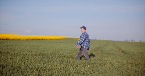 Agriculture-Farmer-Walking-On-Agricultural-Young-Wheat-Field-Examining-Crops-