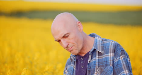 Agronomist-Checking-Rapeseed-Crops-At-Farm-Farmer-Examining-Crops-Checking-Plants-Quality-Agriculture-Concept-2