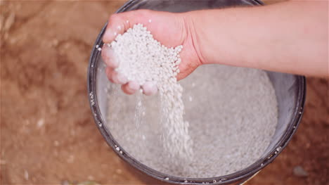 Farmer-Examining-Herbicides-Fertilizer-In-Hands-Before-Fertilizing-Agriculture-Field-1