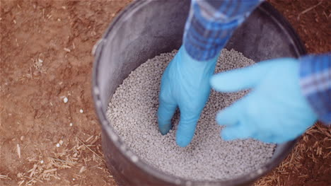 Farmer-Examining-Herbicides-Fertilizer-In-Hands-Before-Fertilizing-Agriculture-Field-2