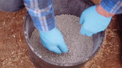 Farmer-Examining-Herbicides-Fertilizer-In-Hands-Before-Fertilizing-Agriculture-Field-4