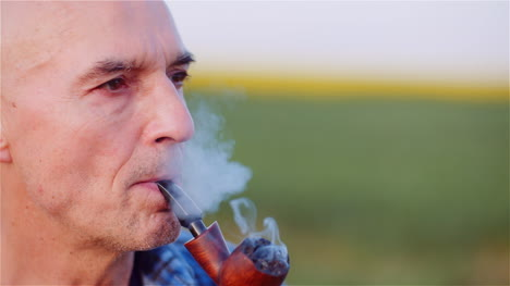 Contented-Bald-Farmer-Smoking-His-Pipe-On-Field-5