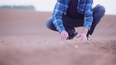 Farmer-Examining-Organic-Soil-In-Hands-Farmer-Touching-Dirt-In-Agriculture-Field-