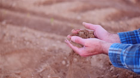 Farmer-Examining-Organic-Soil-In-Hands-Farmer-Touching-Dirt-In-Agriculture-Field-13